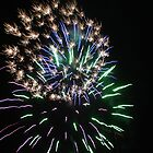 Fireworks by Stacy Cole