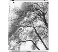 Freezing fog. iPad Case/Skin