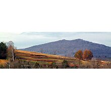 Ad Nunley Mountain  Photographic Print