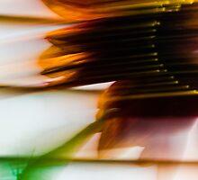 Dancing Sunflower  by TravisFricksC