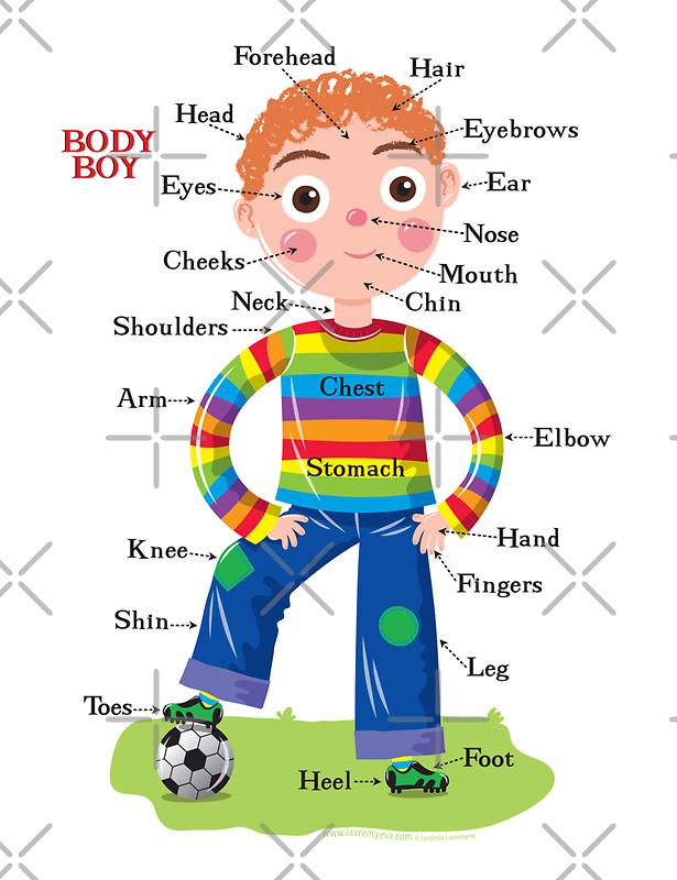 Body Boy by Lyuda