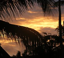 Sunrise by Rachel Hoffman