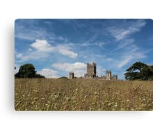 Highclere Castle a.k.a. Downton Abbey Canvas Print