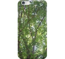 A touch of the tree iPhone Case/Skin