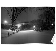 Central Park in the Snow 14 Poster