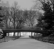 Central Park in the Snow 9 by Brian Ach