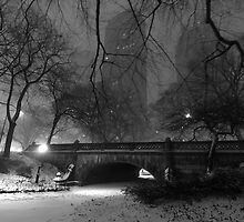 Central Park in the Snow 6 by Brian Ach