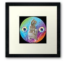 Rainbow Bath Show Framed Print