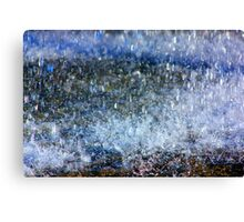 The Beauty of Rain Canvas Print