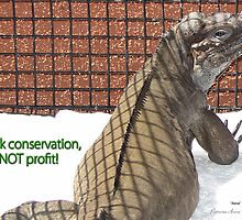 "THINK LIZARDS: ""Think conservation – NOT profit!"" by Patricia Anne McCarty-Tamayo"