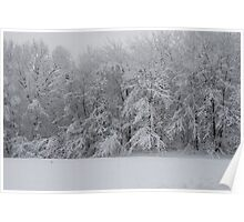 Fresh Snow Series I Poster