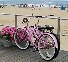 Pink Bicycles  by andykazie