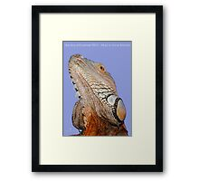 """THINK LIZARDS: """"Help keep wild animals WILD- Adopt or Rescue domestic"""" Framed Print"""