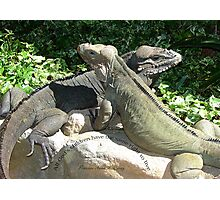 """THINK LIZARDS: """"All God's children have the same right to live."""" Photographic Print"""