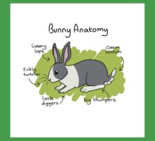 Bunny Anatomy Kids Clothes