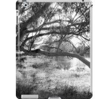The lake at Dunkeld Community Park in Dunkeld, Victoria, in monochrome iPad Case/Skin