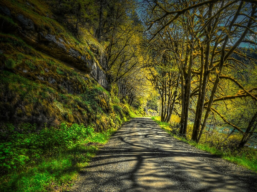 Shadows On The Trail by Charles & Patricia   Harkins ~ Picture Oregon
