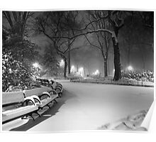 Central Park in the Snow 18 Poster