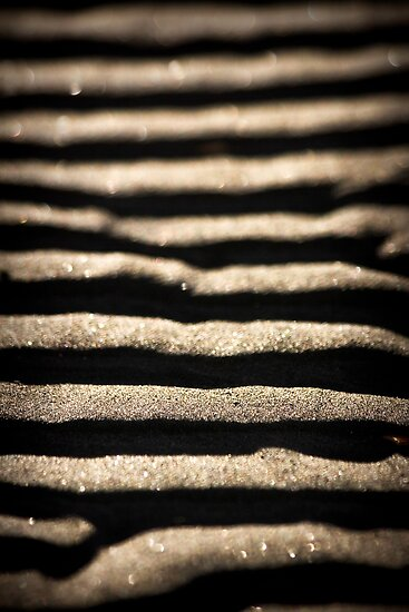 Taking Steps in the Sand - Kai Iwi Beach, Wanganui,l NZ by Angela McConnell