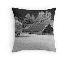 Irving College Barn Throw Pillow