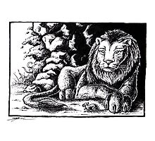 The lion and the mouse Photographic Print