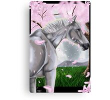 Horse Cherry Blossoms  Canvas Print