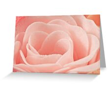 Bath Time Rose Soap Macro Greeting Card
