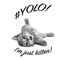 YOLO! I'M JUST KITTEN  Photographic Print
