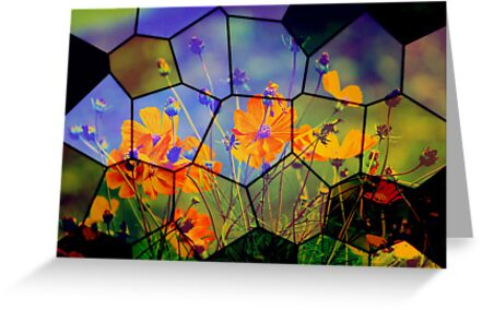 Wild Flowers seen from inside the bubble by Vasile Stan