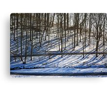 Shadows on the Snow Canvas Print