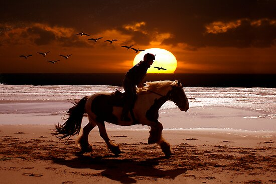 SUNSET RIDER DRUIDSTON WALES by kfbphoto