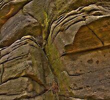 I Am A Rock by Dave Warren
