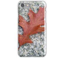 A Fallen Leaf iPhone Case/Skin