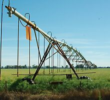 irrigation by ndarby1