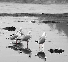 Mirror by the Sea by Peter Harrison
