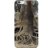 exposed roots iPhone Case/Skin