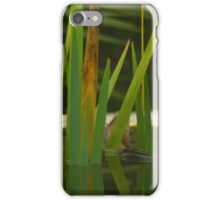 Water plants iPhone Case/Skin