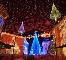 Osborne Family Spectacle of Dancing Lights by zmayer