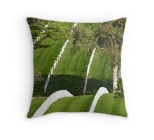 Freedom is not Free Throw Pillow