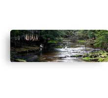 First Cast, Opening Day, Trout Season Canvas Print