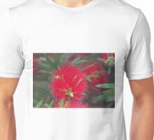 Red callistemon flower Unisex T-Shirt