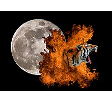 Birth Of The Tiger Photographic Print