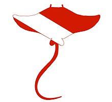 Stingray Scuba Diver Silhouette by surgedesigns