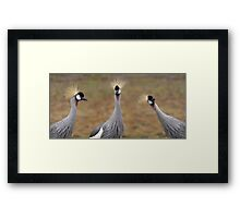 Don't Forget About Me Framed Print
