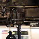 Downtown & Brooklyn via Express by Douzy