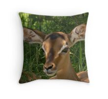 Would YOU hunt me? Throw Pillow