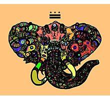 DC Elephant BLK orange ALT Photographic Print