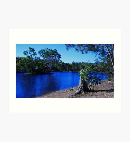 South Australian Scenery Art Print