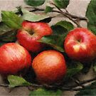Apples by Ganz