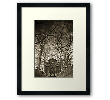 Reflections IV Framed Print